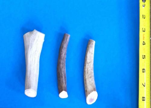 rmac-elk-antler-dog-chews-small-1.jpg