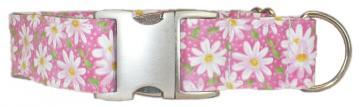 UC_Dog_Collar_Painted_Daisies_Pink-1.jpg