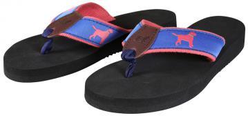 bc-flip-flops-labrador-on-blue