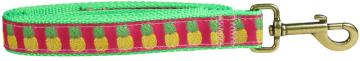 bc-ribbon-dog-leash-pinapple-1-inch