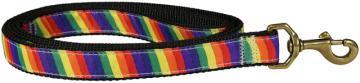 bc-ribbon-dog-leash-rainbow-1-inch