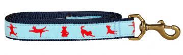bc-ribbon-dog-leash-yoga-dog-1-inch