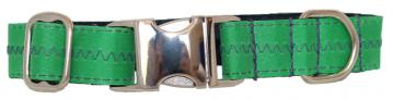 ch-dog-collar-sail-cloth-green-with-blue-stitching-1