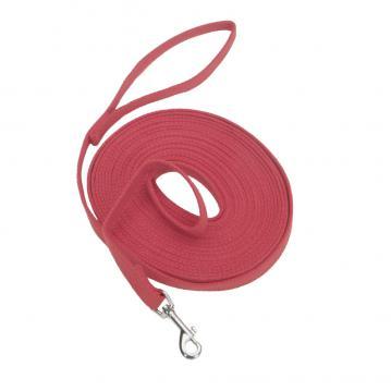 ct-dog-leash-training-1.jpg