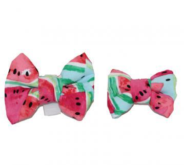 dog-bow-tie-watermelon-1