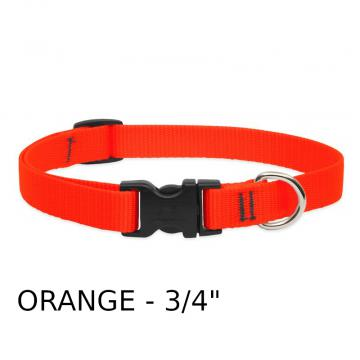 lp-dog-collar-nylon-blaze-orange-3_4-inch
