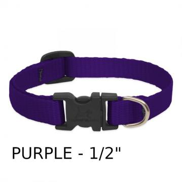 lp-dog-collar-nylon-purple-1_2-inch