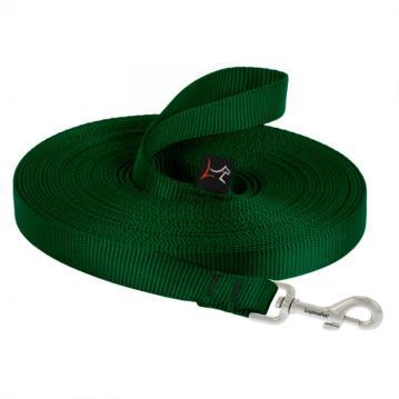 lp-dog-leash-training-green