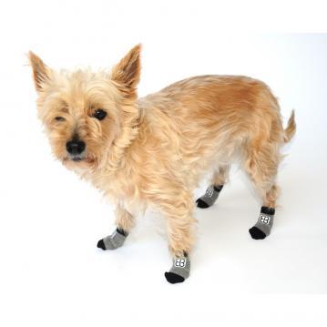 pe-dog-traction-control-socks-1