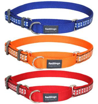 rd-reflective-martingale-dog-collar.jpg