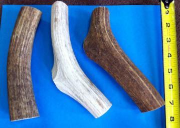 rmac-elk-antler-dog-chews-xlarge-1.jpg