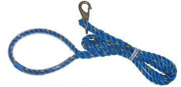 ts-dog-leash-1.jpg