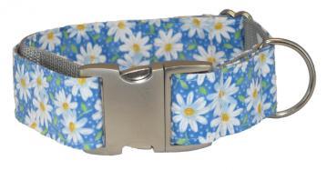 uc-dog-dog-collar-daisies-blue-1.jpg