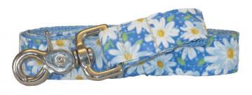 uc-dog-dog-leash-daisies-blue-1.jpg