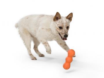wp-dog-chew-toy-rumpus-3