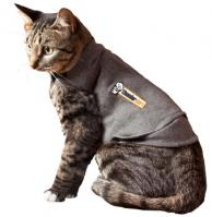 Cat Thundershirt