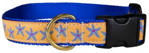 Starfish (Blue & Yellow) – 1-inch Ribbon Dog Collar