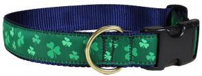 bc-ribbon-dog-collar-shamrock-1-25