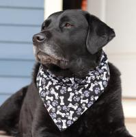 bd-reversible-dog-bandana-red-lobster-paws-and-bones-on-black-1