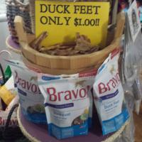 Duck Foot Dog Treat - Single