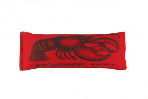 dp-pillow-catnip-cat-toy-lobstah-nip-1