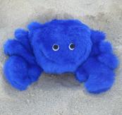 ps-plush-blue-crab-dog-toy-1