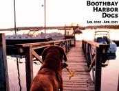 tsd-boothbay-harbor-dogs-calendar-cover