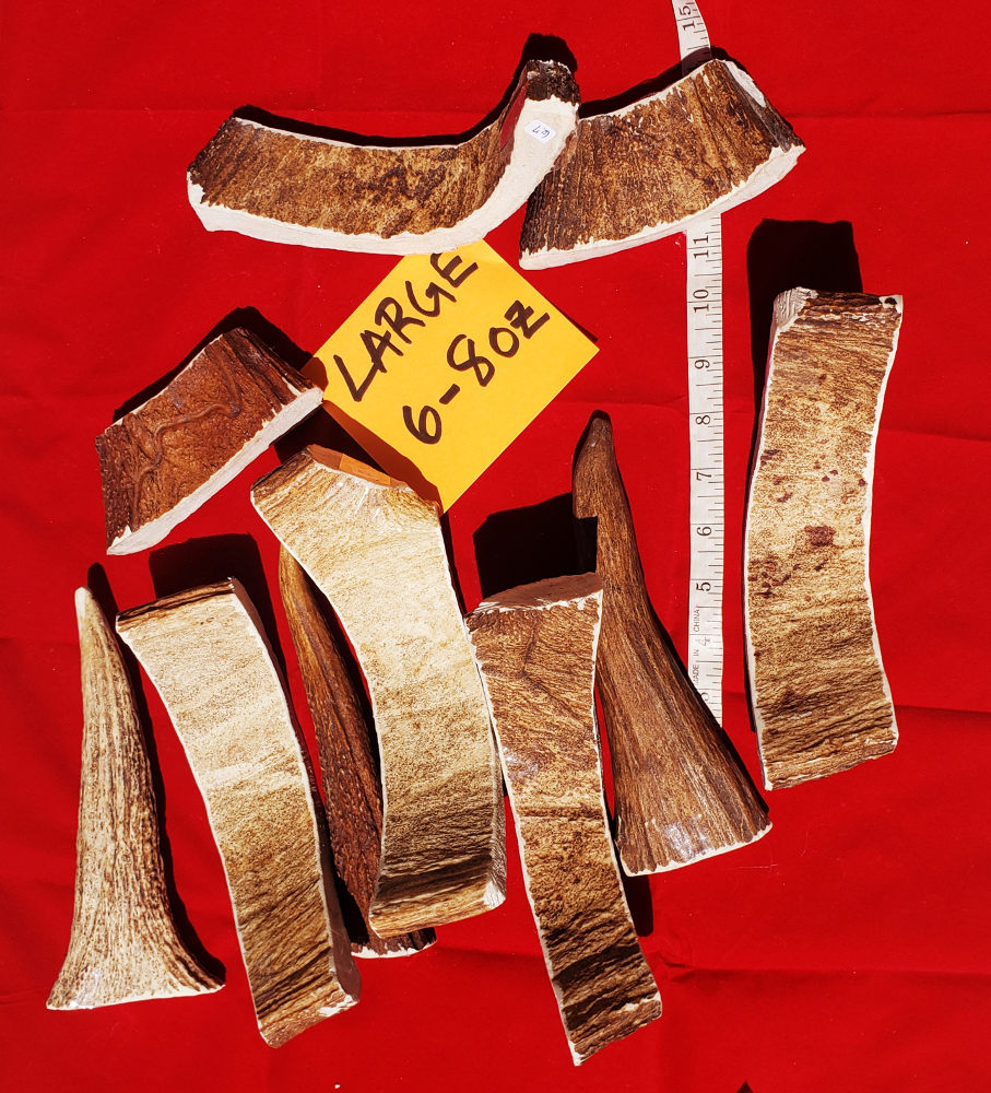 tl-maine-moose-antlers-long-lasting-dog-chew-large