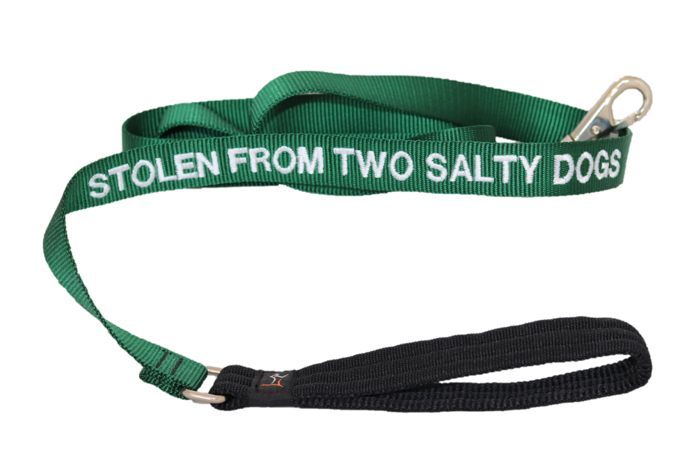 tsd-nylon-dog-leash-stolen-from-two-salty-dogs-green