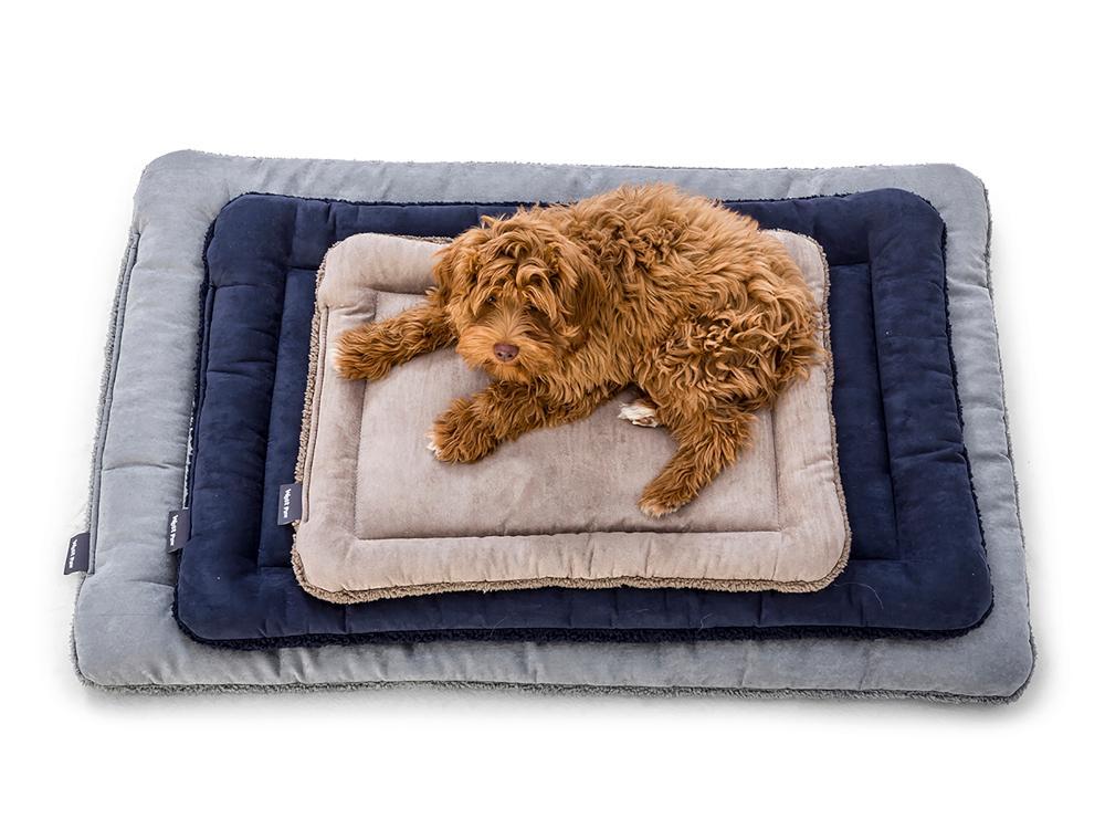 wp-dog-mat-big-sky-nap-1