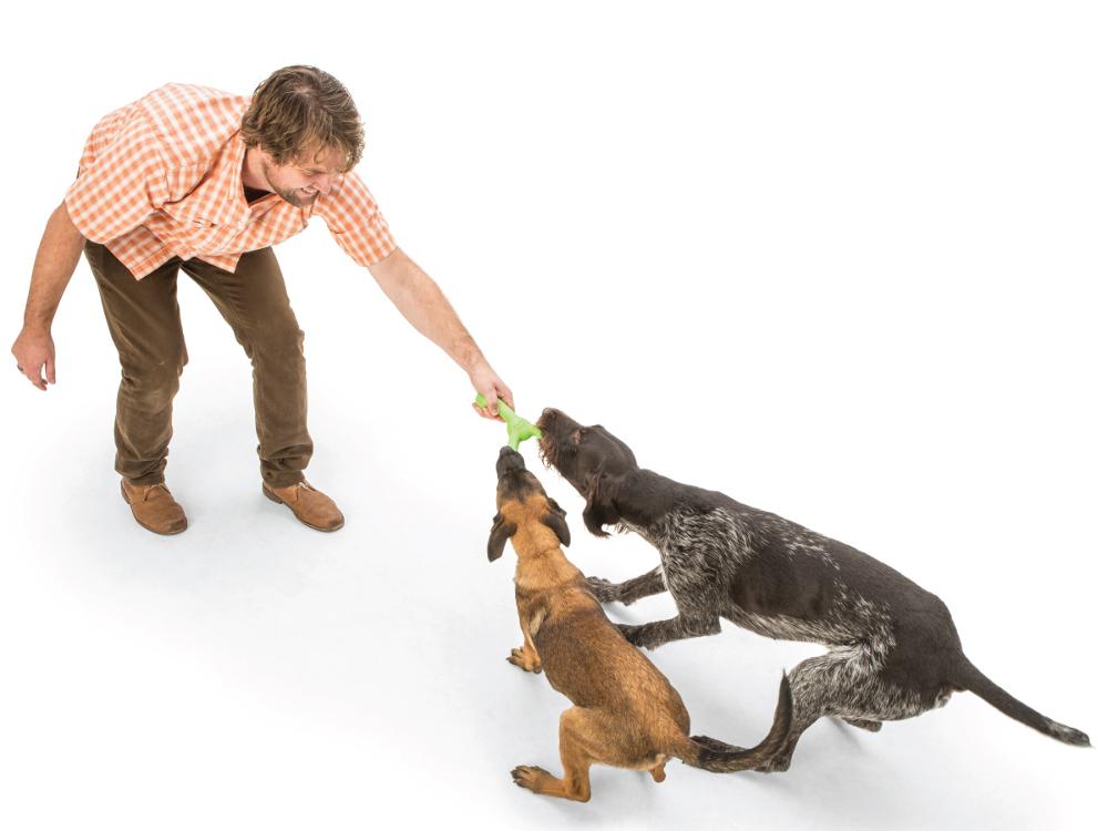 wp-dog-tug-toy-skamp-4