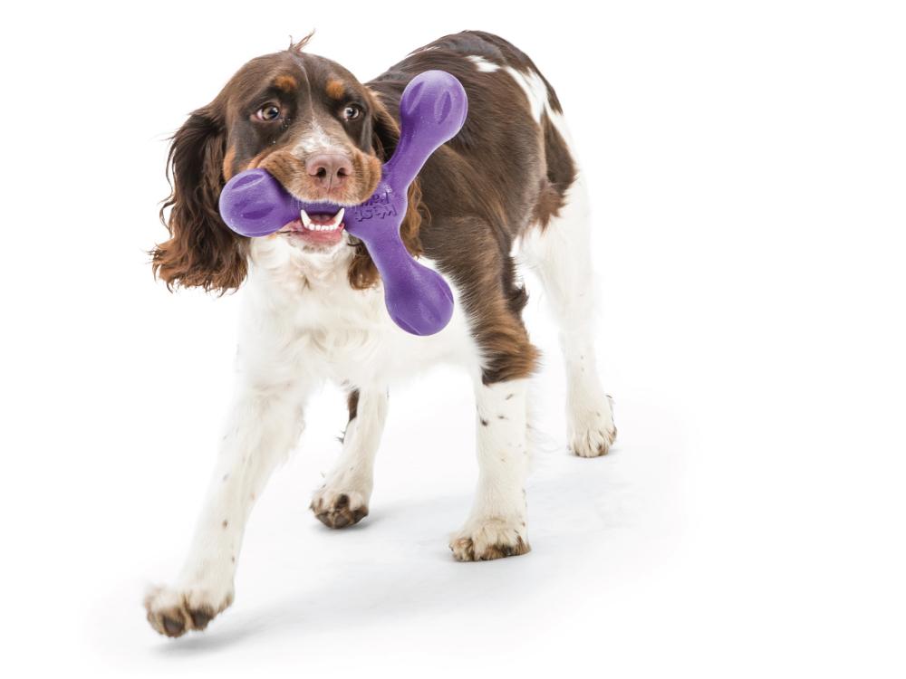 wp-dog-tug-toy-skamp-5
