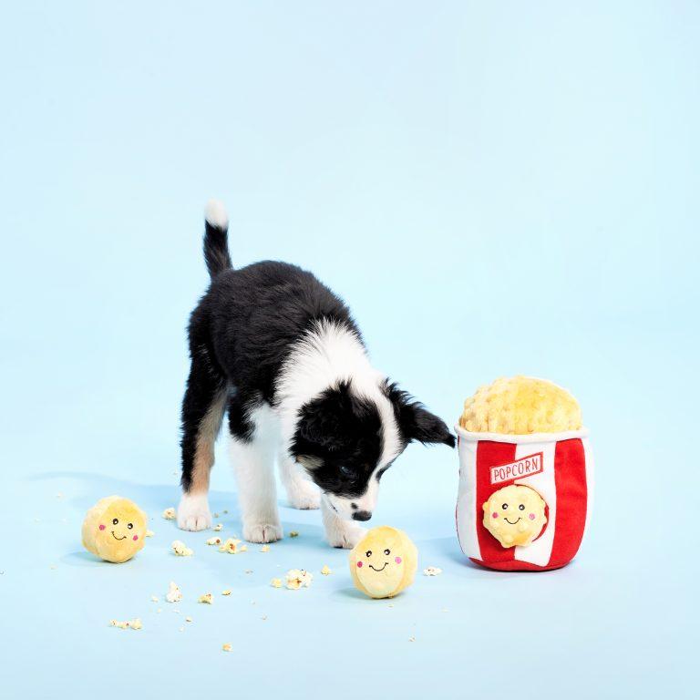 zp-popcorn-bucket-burrow-soft-dog-toy-3