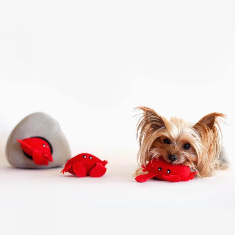 zp-red-crab-burrow-soft-dog-toy-2